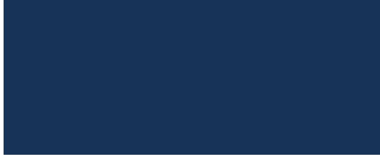 vizyon grubu logo